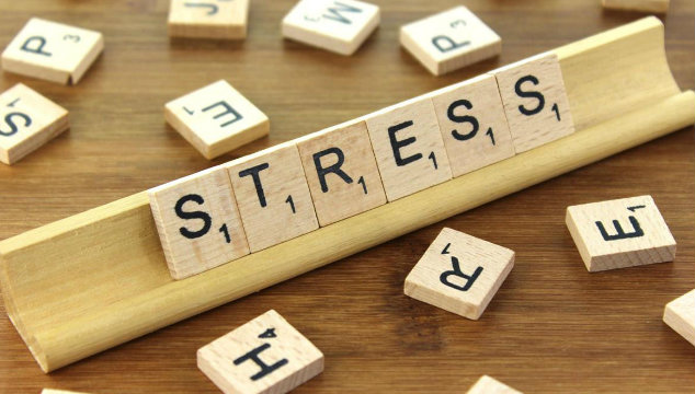 Fertility and Stress