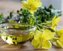 Evening Primrose Oil and Fertility