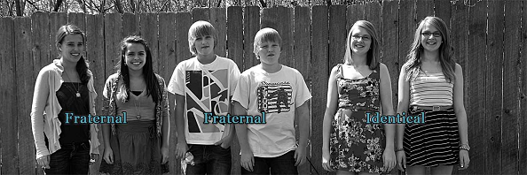 fraternal twins vs identical twins